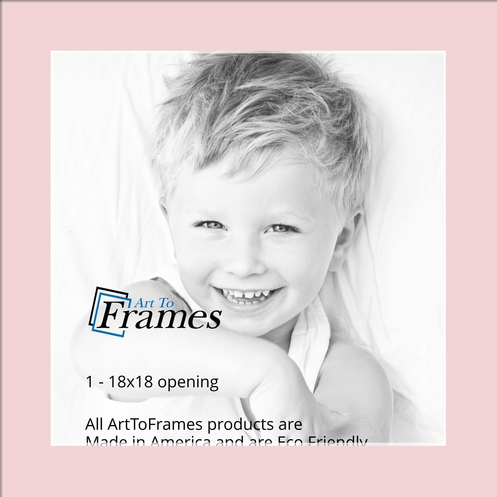 Arttoframes Custom Pink Hollyhock Picture Photo Frame Mat